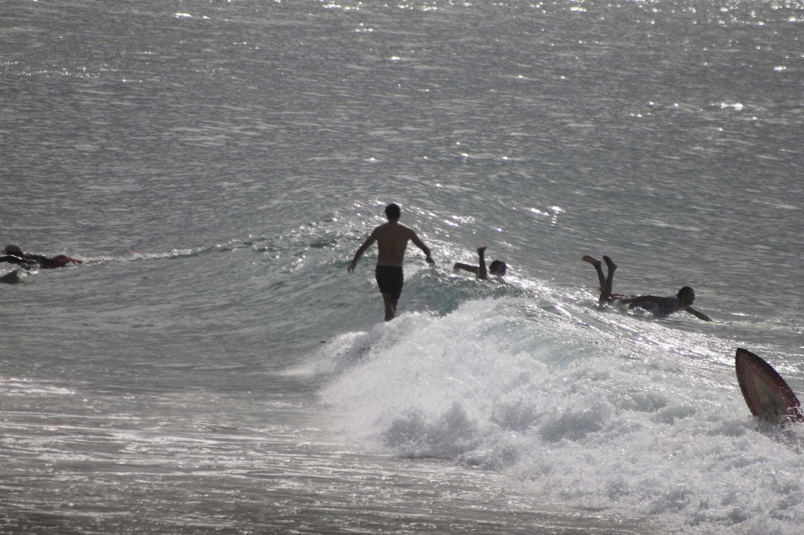 11-03-2016-australia-siebert-surfboards-19