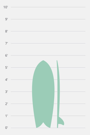 Hollow Wooden Fish 5'6″-5'10""