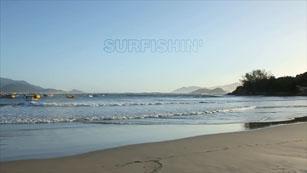 Surfishin'